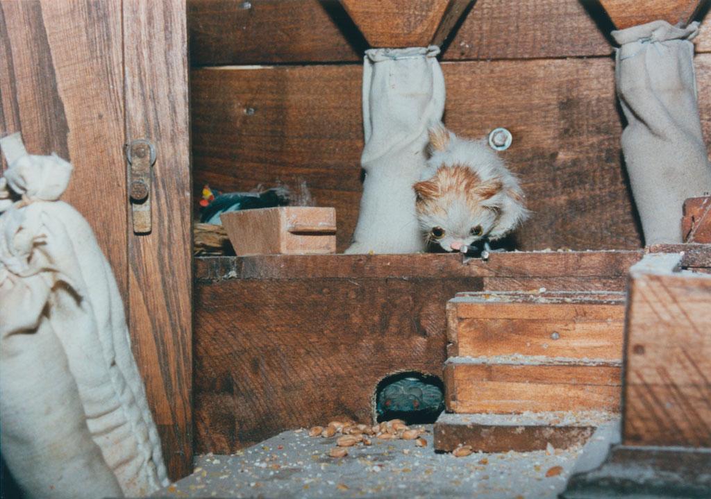 Un gato esperando atrapar un ratón en el molino.