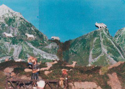 Las ovejas al corral en 1999.