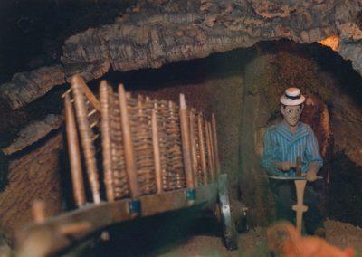 Un segador en 1991.