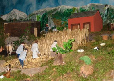 Segando el trigo en 2005.